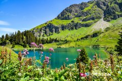 2020.07 CH | Col des Mosses - Lac Lioson VD