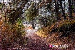 sierre_boisfinges_201208_-35