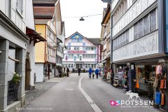 appenzell_210410_-33