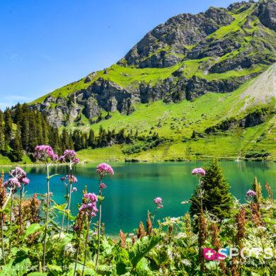 2020, col des mosses, lac lioson, lacs, montagne, vaud